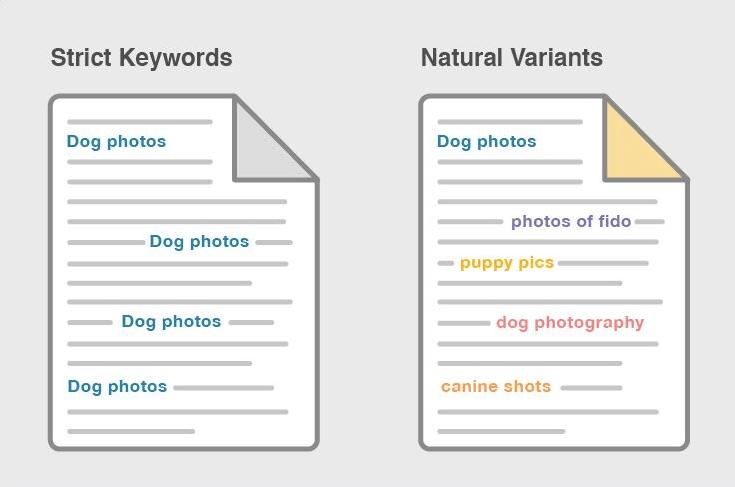 Sinónimos y variantes